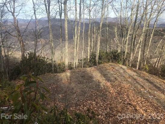 C-63  Natsi Trail, Maggie Valley, NC - USA (photo 4)