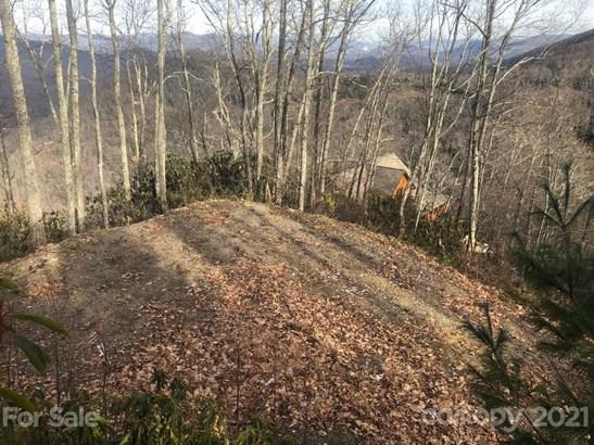 C-63  Natsi Trail, Maggie Valley, NC - USA (photo 5)