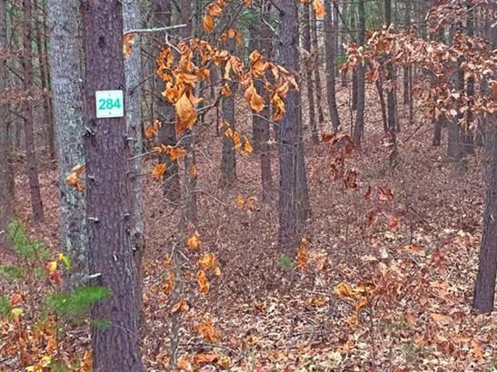 Lot 284  Trillium Trail, Nebo, NC - USA (photo 3)