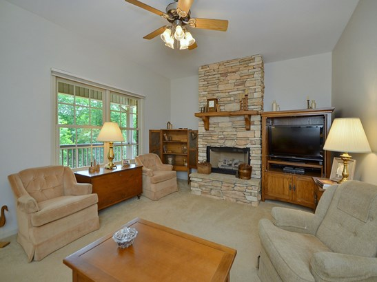 463  Cheulah Road, Brevard, NC - USA (photo 4)