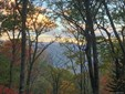 0  Dancing Bear Trail, Balsam, NC - USA (photo 1)
