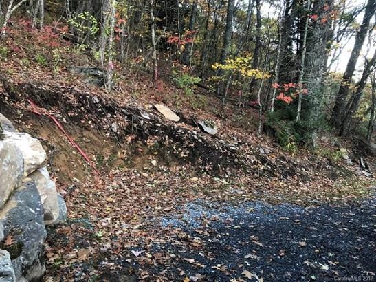 0  Dancing Bear Trail, Balsam, NC - USA (photo 4)