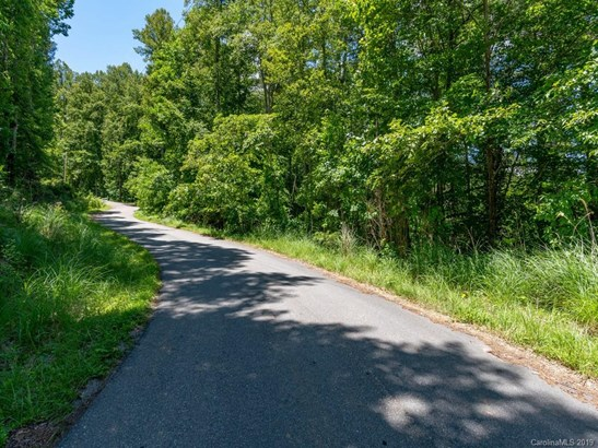 Lot #40 Quail Ridge Road, Mars Hill, NC - USA (photo 3)
