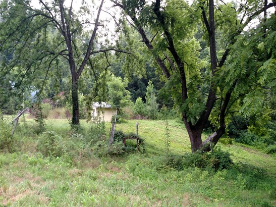 344  Yellow Bird Branch Road, Sylva, NC - USA (photo 4)