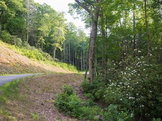 Lot 3  Bee Tree Road, Swannanoa, NC - USA (photo 5)