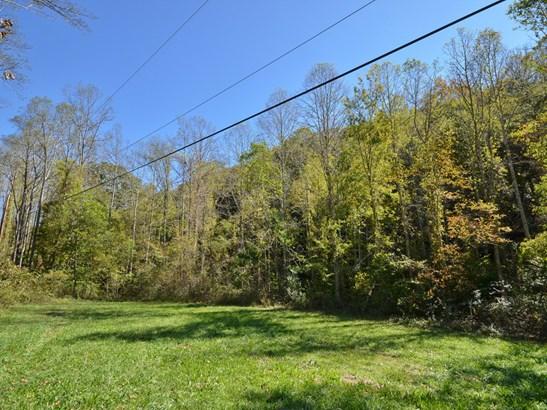 349  Hookers Gap Road, Candler, NC - USA (photo 4)