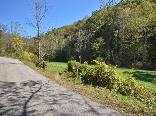 349  Hookers Gap Road, Candler, NC - USA (photo 5)
