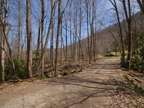 470  Haw Branch Road, Barnardsville, NC - USA (photo 2)