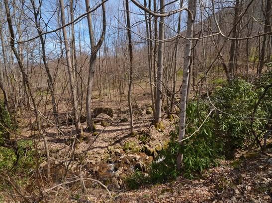 470  Haw Branch Road, Barnardsville, NC - USA (photo 3)