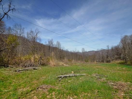 470  Haw Branch Road, Barnardsville, NC - USA (photo 5)