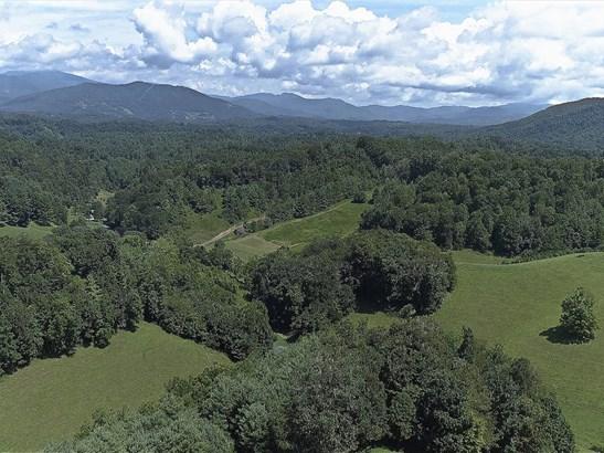 1364  Long Branch Road, Green Mountain, NC - USA (photo 4)