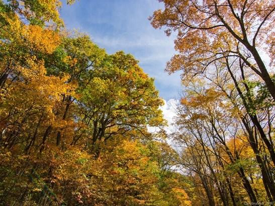 9999  Eagle Bald Trail, Burnsville, NC - USA (photo 1)