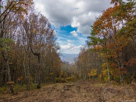 9999  Eagle Bald Trail, Burnsville, NC - USA (photo 2)
