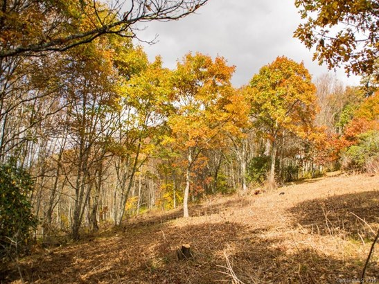 9999  Eagle Bald Trail, Burnsville, NC - USA (photo 3)