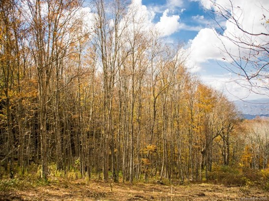 9999  Eagle Bald Trail, Burnsville, NC - USA (photo 4)