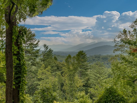 41  Old Camby Road, Asheville, NC - USA (photo 5)