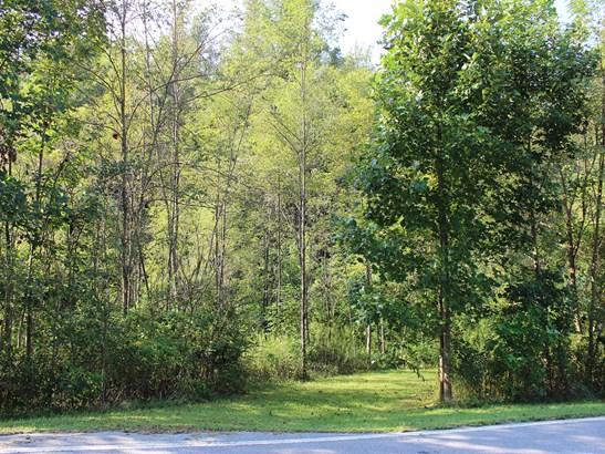 0  King Road, Pisgah Forest, NC - USA (photo 1)