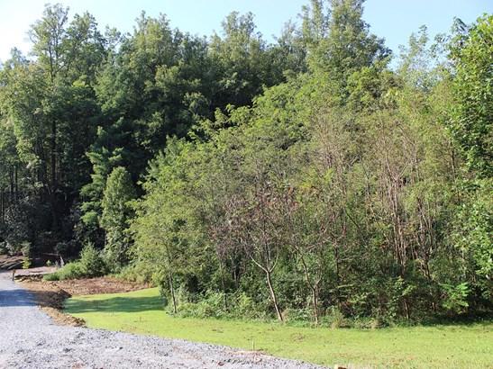 0  King Road, Pisgah Forest, NC - USA (photo 5)