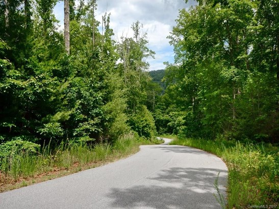0  Chimney Rock Road, Hendersonville, NC - USA (photo 3)