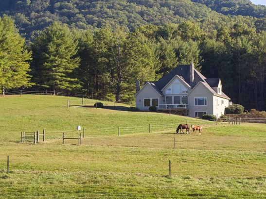 20  Farm View Road, Fairview, NC - USA (photo 3)