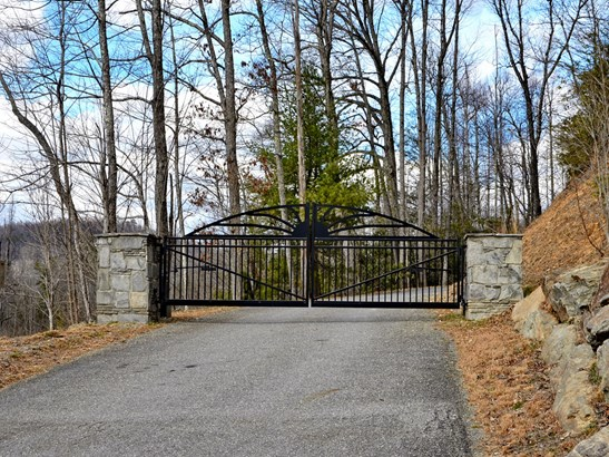44  Turkey Trace Lane, Black Mountain, NC - USA (photo 2)