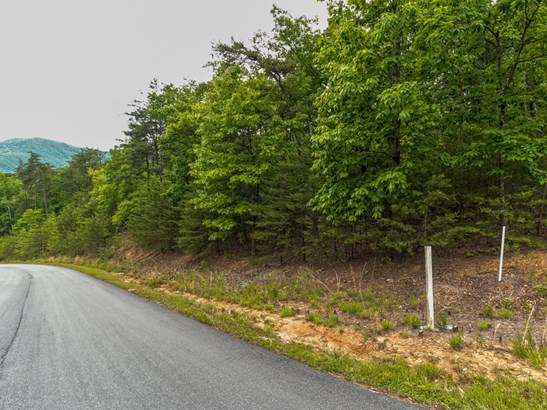 Lot 297  Pierce Court, Mill Spring, NC - USA (photo 2)