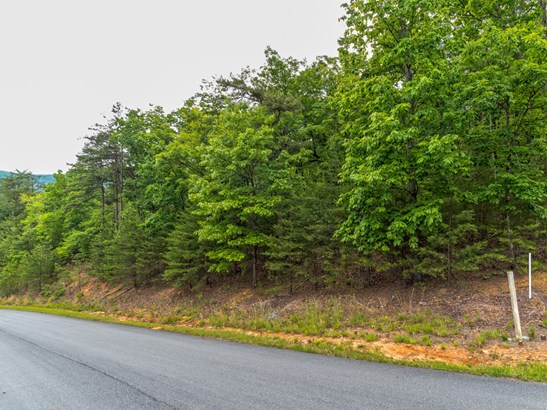 Lot 297  Pierce Court, Mill Spring, NC - USA (photo 4)