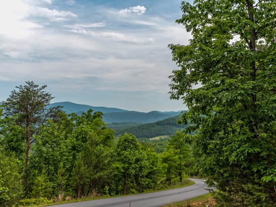 Lot 297  Pierce Court, Mill Spring, NC - USA (photo 5)