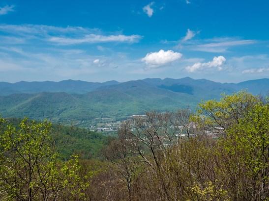40  Mountain Azalea Drive, Swannanoa, NC - USA (photo 2)