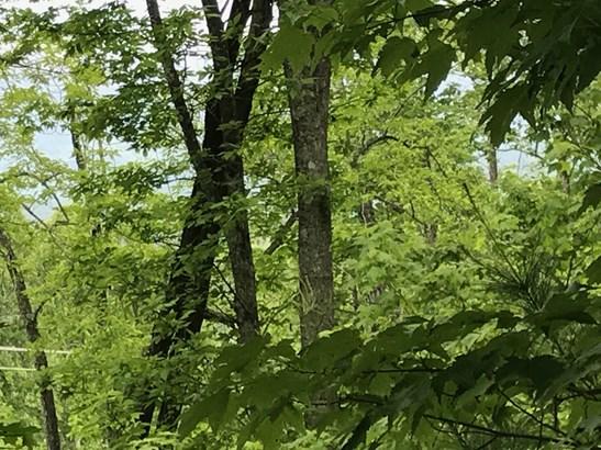 68  Cottage Settings Lane, Black Mountain, NC - USA (photo 1)