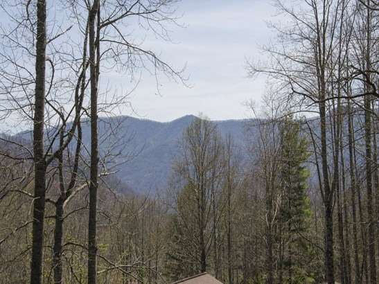 174  Cottontail Trail, Maggie Valley, NC - USA (photo 3)