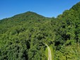 10 W Fork Road, Cashiers, NC - USA (photo 1)