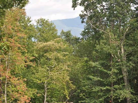 58  Sisters View Drive, Black Mountain, NC - USA (photo 2)