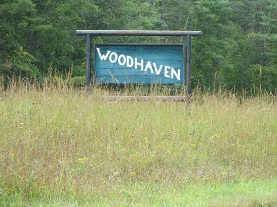 Lot #47 Woodhaven Road, Mars Hill, NC - USA (photo 1)