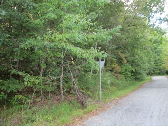 Lot #47 Woodhaven Road, Mars Hill, NC - USA (photo 3)