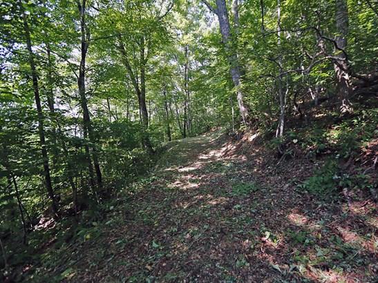 00  Awohali Trail, Maggie Valley, NC - USA (photo 1)