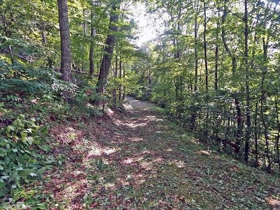 00  Awohali Trail, Maggie Valley, NC - USA (photo 3)