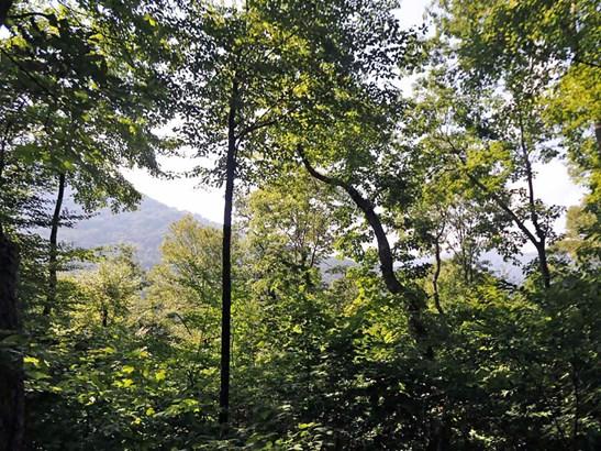 00  Awohali Trail, Maggie Valley, NC - USA (photo 4)