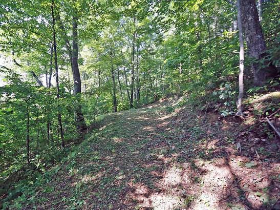 00  Awohali Trail, Maggie Valley, NC - USA (photo 5)