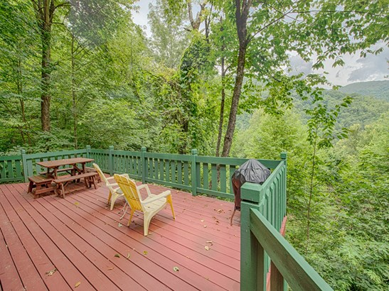 529  Conley Drive, Maggie Valley, NC - USA (photo 2)