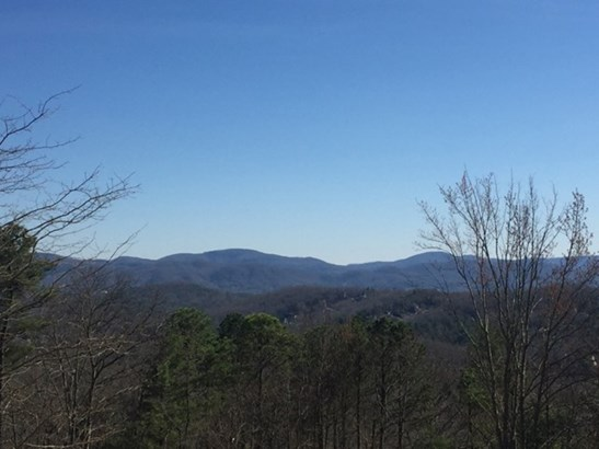 42  Wonderland Ridge Trail, Fairview, NC - USA (photo 2)