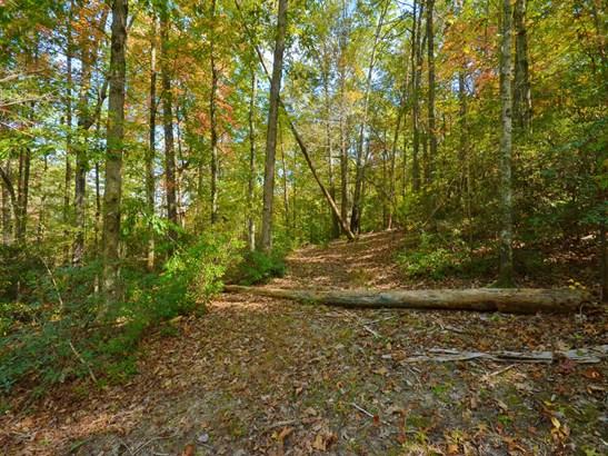 00  Riversound Lane, Saluda, NC - USA (photo 3)