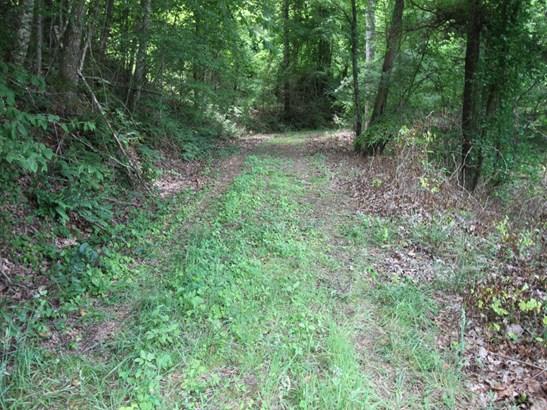 9999  Westover Drive, Burnsville, NC - USA (photo 4)