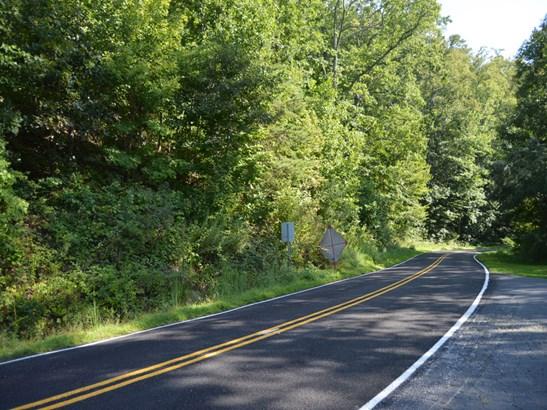 71 Acres  Locust Grove Road, Hendersonville, NC - USA (photo 1)