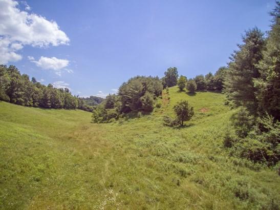 1364  Long Branch Road, Green Mountain, NC - USA (photo 3)