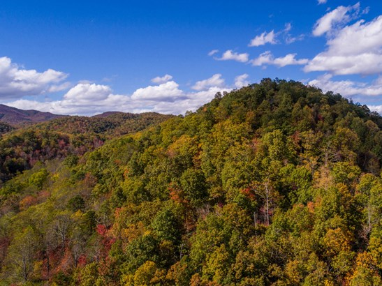 99999 Crooked Creek Road, Black Mountain, NC - USA (photo 2)