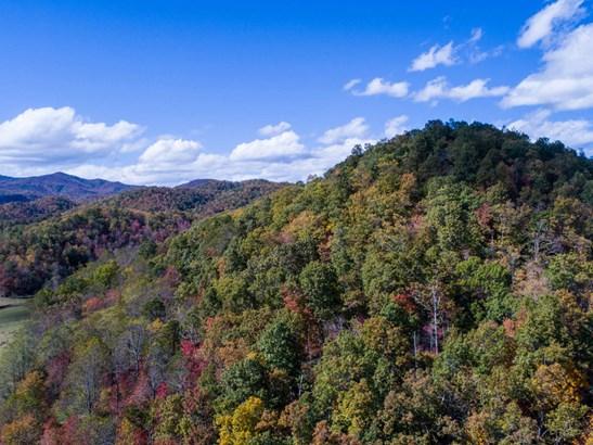 99999 Crooked Creek Road, Black Mountain, NC - USA (photo 3)