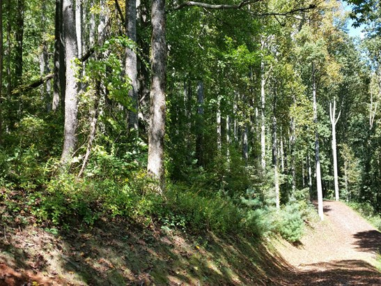 Lot 20  Forest Rose Lane, Sylva, NC - USA (photo 2)