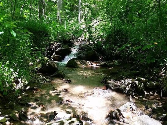 000  Martins Creek Road, Barnardsville, NC - USA (photo 2)