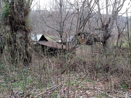 115  Woodland Drive, Canton, NC - USA (photo 2)